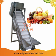 Plastic Engineering Scraper Lifting Conveyor for fruit and vegetable processing machine