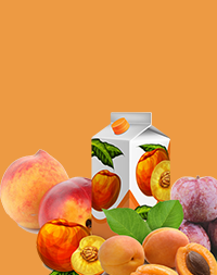 Peach, apricot, plum, cherry stone fruits processing machine
