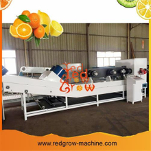 High Quality Apple Waxing Machine