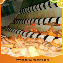 Carrots Washer Machine